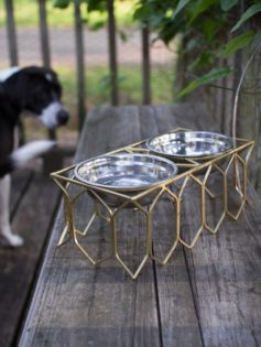pet bowl modern gold 237x315