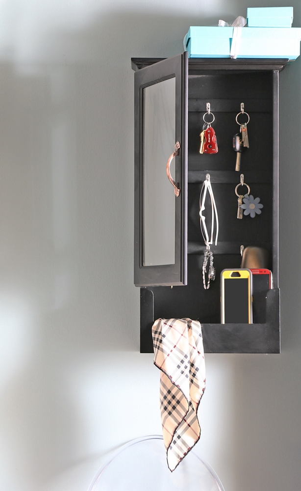 Mirror Wall Cabinet in Black